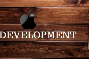 netface-ios-development-image-1