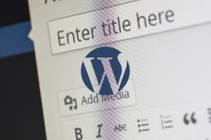 wordpress-web-development-cms-image