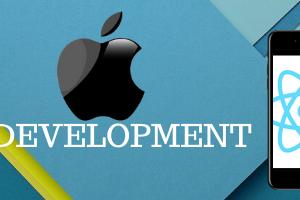 netface-ios-development-image-2